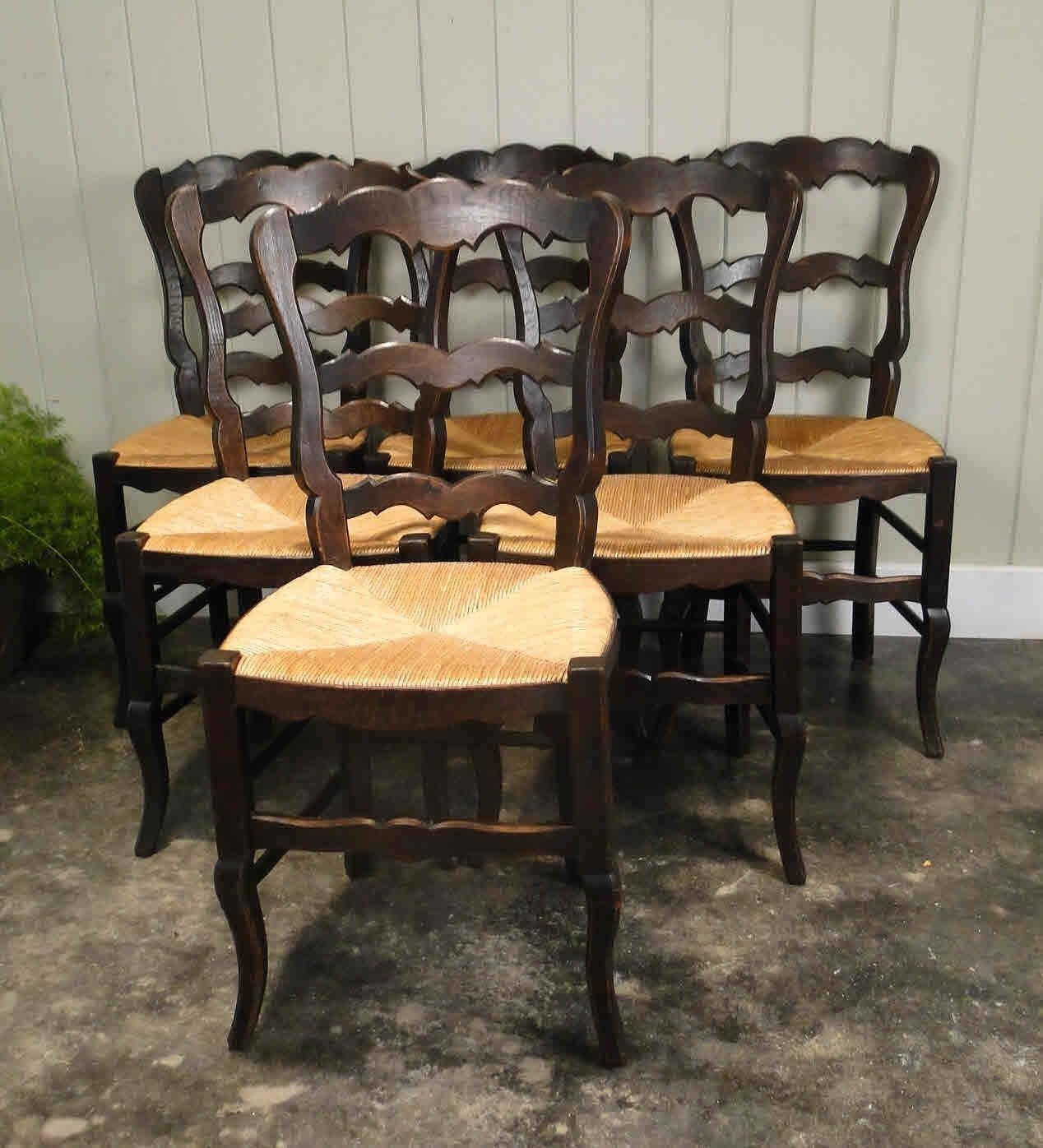 French Antique Tall Ladder Back Dining Chairs with Rush Seats, Shell Carvings and Strong Stretchers